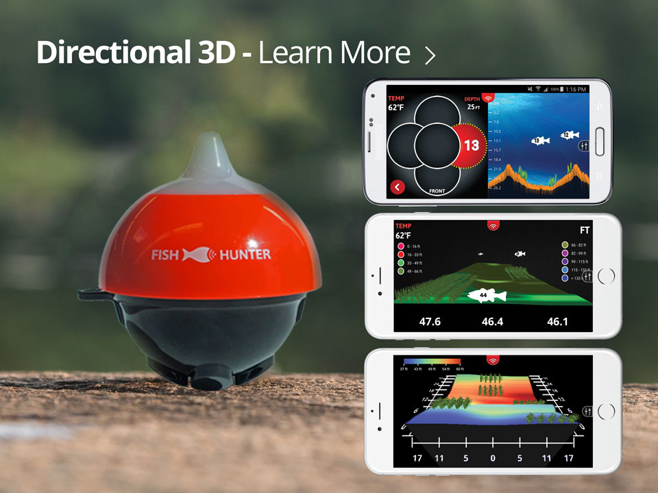 learnmore-3d-960